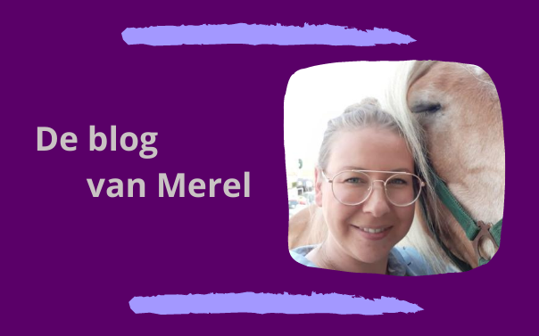 Blog van Merel